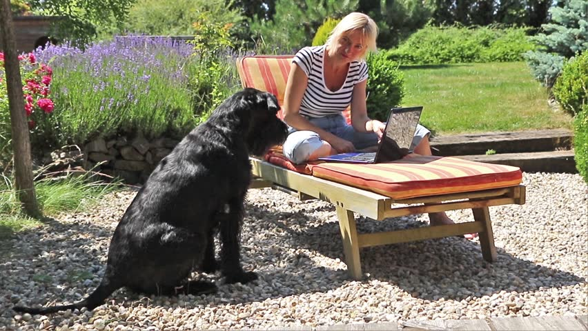 Giant black schnauzer is barking at middle aged blonde woman who is sitting on deck chair with  open notebook. #11490317