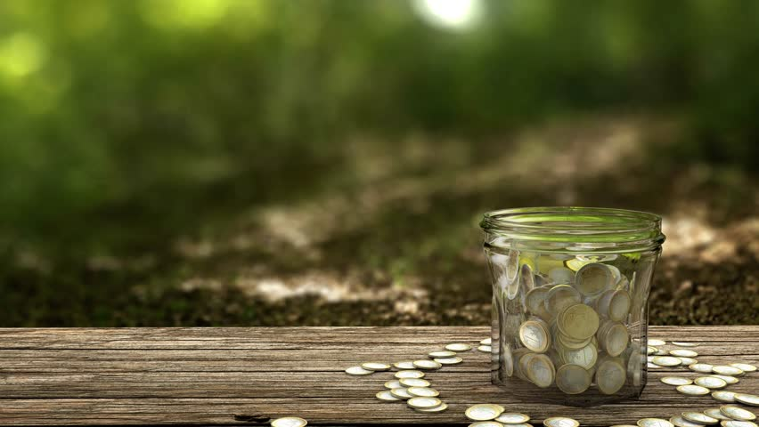 Plant growing from money jar. Concept of financial investment. 4k footage.