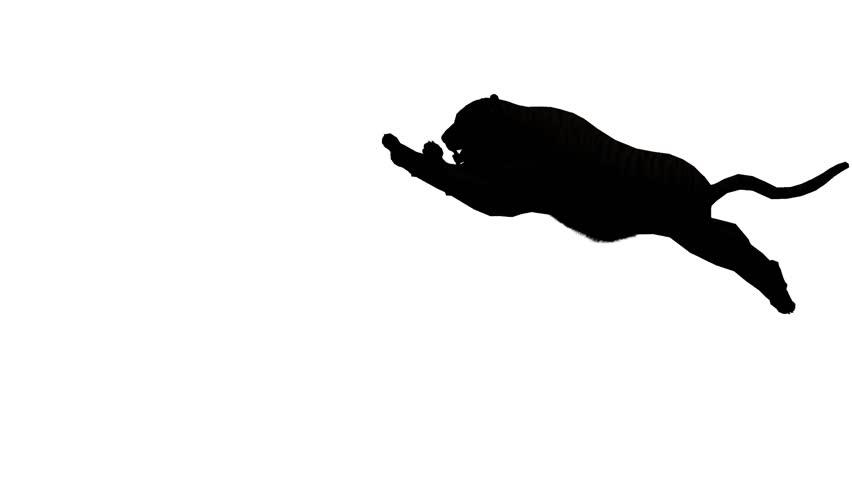 Tiger jumped to attack prey sketch silhouette,wildlife animals habitat. cg_02104
