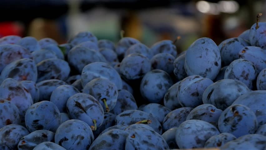 Beautiful plums in the foreground,close up,in the blurred background people passing,fresh seasonal fruit on the stall at market,shallow depth of field,outdoor,macro,isolated,daylight. | Shutterstock HD Video #11579042