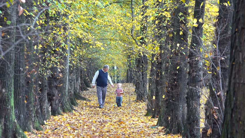 Grandfather and grandchild playing in nature, spoiling child in autumn park