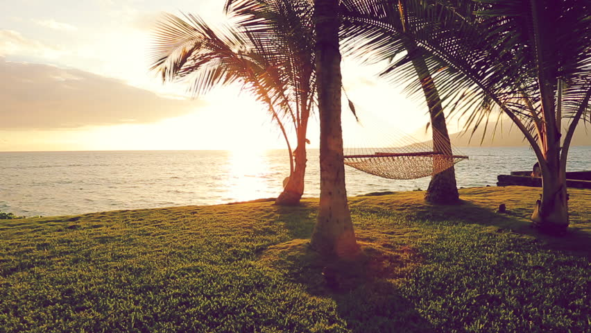 Hammock And Palm Trees At Sunset Swinging On The Wind Between Two Backyard Oceanfront Real Estate Maui Stock Footage Video 11708372