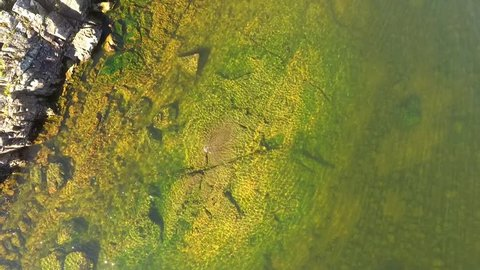 Aerial Video of Shallow Clear Lake Waters