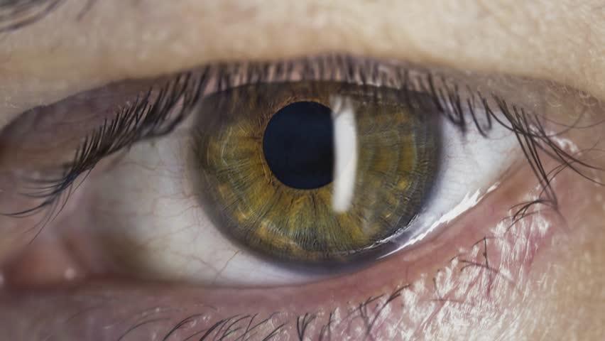 Eye macro with computer code overlay  #12354512