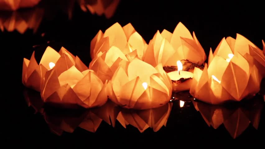 Floating lotus flower paper lanterns on water stock footage video floating lotus flower paper lanterns on water stock footage video 12373292 shutterstock mightylinksfo Gallery