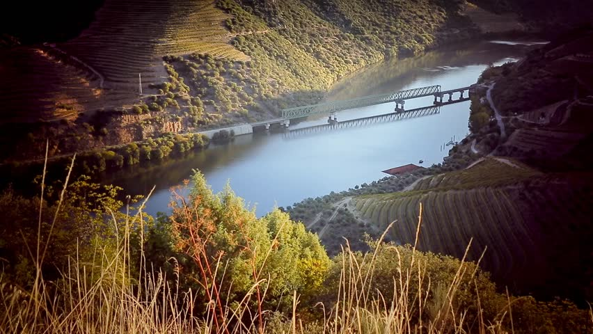 Cinemagraph Loop - high view of river green train bridge -motion photo | Shutterstock HD Video #12532592