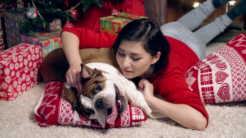 the girl lies on a pillow and scratches an ear of a bulldog under a New Year tree