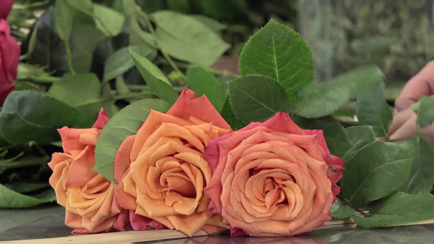 A florist manufactures a bouquet of roses | Shutterstock HD Video #12747662