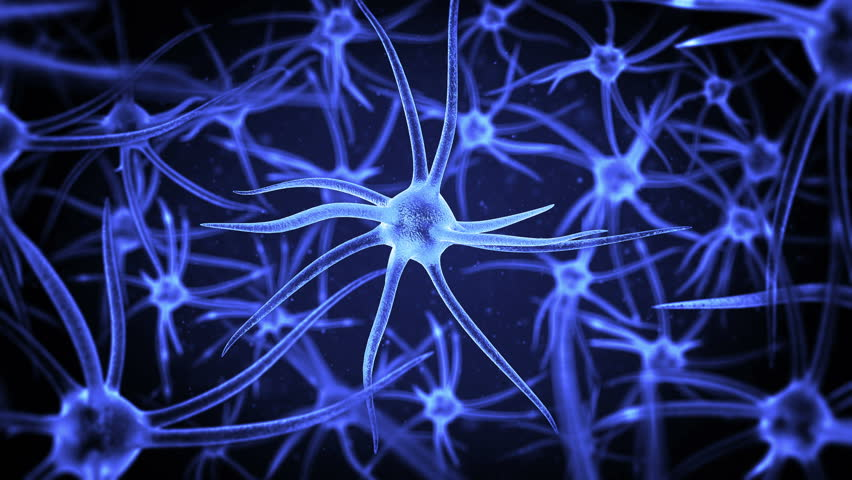 loopable science background with several neurons with depth of field #12852032