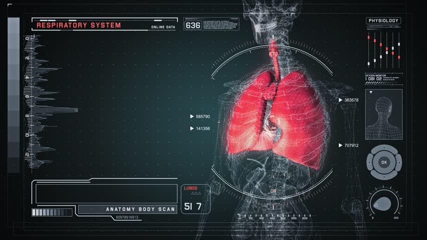 Human Respiratory Anatomy with Futuristic Medical Interface. Seamless Loop.