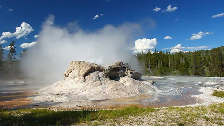 Small spurts of water erupt from Grotto Geyser in Yellowstone National Park - Wyoming