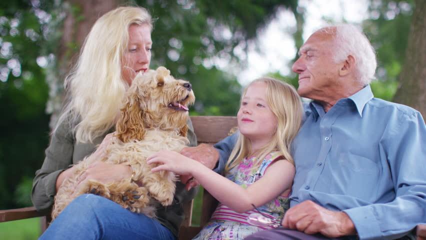 Resultado de imagem para HAPPY WHIT DOG