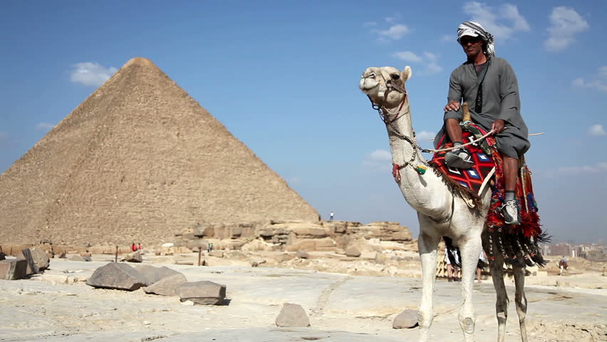 Man on camel near the great pyramids