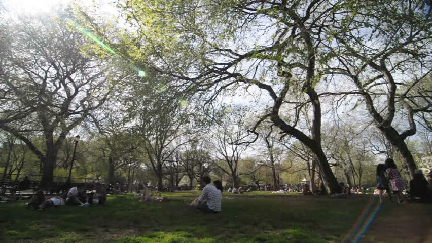 NEW YORK- CIRCA 2009 Timelapse of people in park, circa 2009.