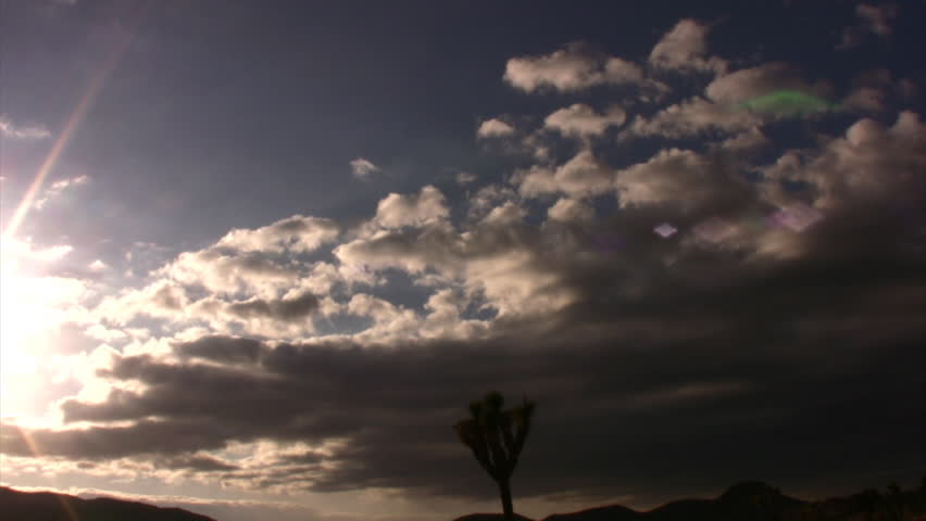 Joshua Tree Sunset 05 Time Lapse 5x California USA | Shutterstock HD Video #1343302