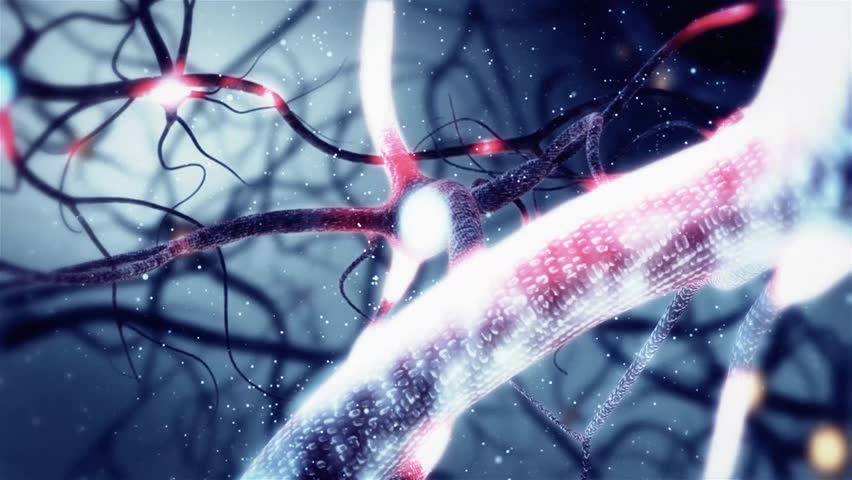 Real Neuron synapse network with red electric impulse activity 3D animation. Infinite Loop inside the human brain.