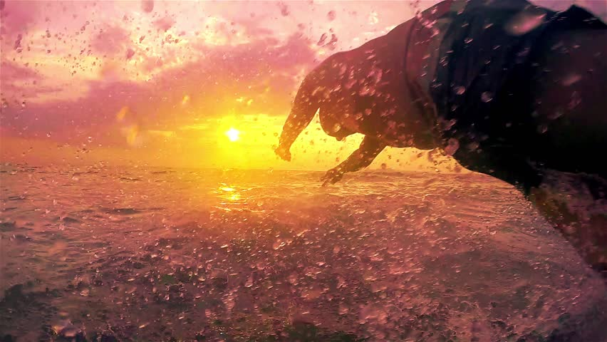 Young men jumping in the sea at sunset, SLOW MOTION