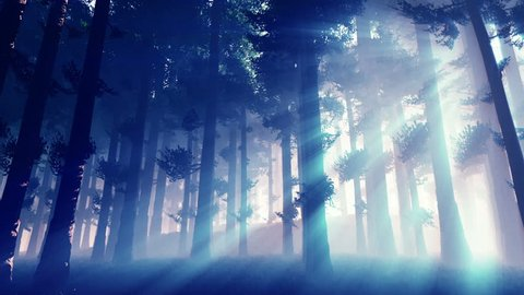 Mysterious Fairy Tale Magic Deep Forest with Lightrays Epic Natural 3D Animation