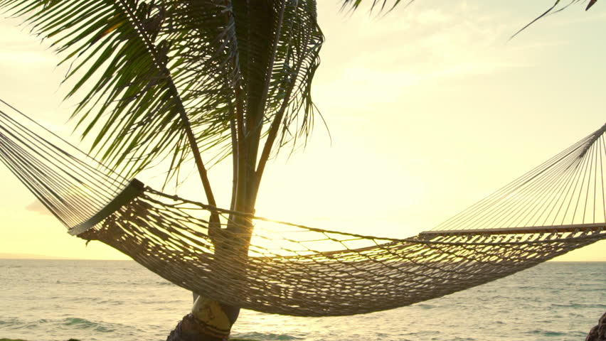 Hammock And Palm Trees At Sunset SLOW MOTION Luxury Vacation Relaxation Lifestyle Swinging On The Wind Between Two Backyard Oceanfront