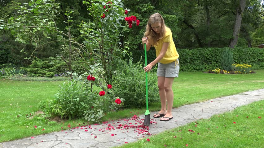 Blond Gardener Woman Girl In Shorts Sweep Fallen Rose Petals On Stone  Cobbled Path With Broom