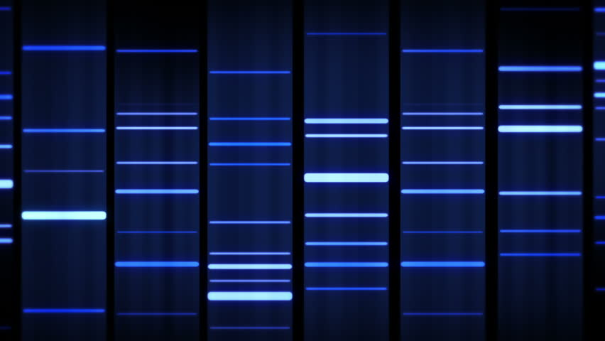 DNA Sequence. Zoom out. Black-Blue. 3 videos in 1 file. Lateral and frontal view of DNA sequences. | Shutterstock HD Video #13809095