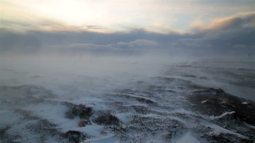 Arctic wasteland hurricane gale force winds blowing snow over tundra moss Iceland