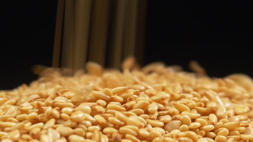Pouring sesame seeds into plate. Pure black background.
