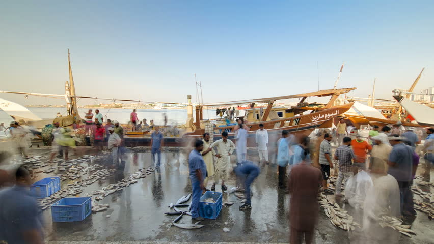 Fish market in the emirate of Ajman timelapse.  United Arab Emirates