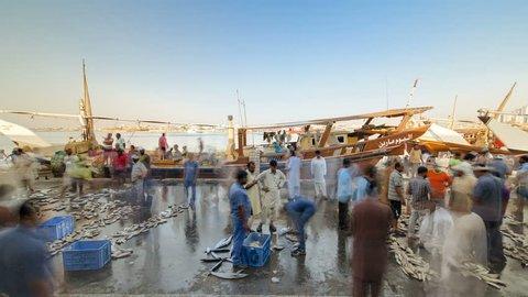 Fish market in the emirate of Ajman timelapse.  United Arab Emirates