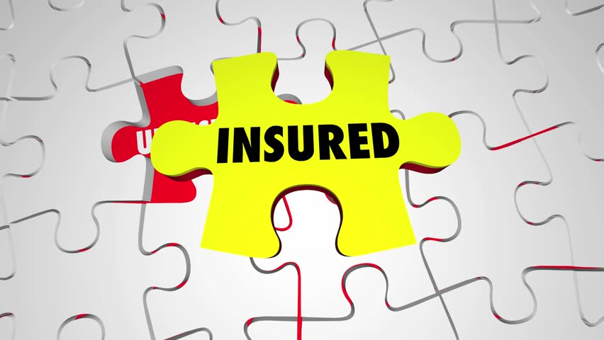 Insurance Coverage Policy Fill Uninsured Gap Puzzle