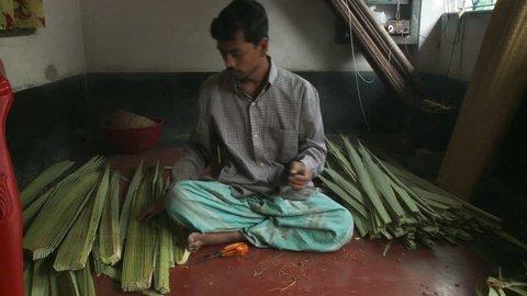 Baruipur, India - CIRCA 2013 - Indian man working cutting plants