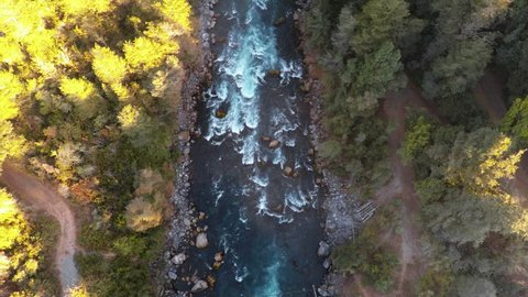 Wide overhead tracking shot looking directly down on deep blue river in summer flowing toward golden trees at sunrise in Patagonia Chile - 2K Aerial