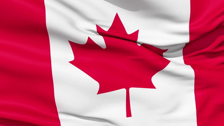 Realistic 3d seamless looping Canada flag waving in the wind.