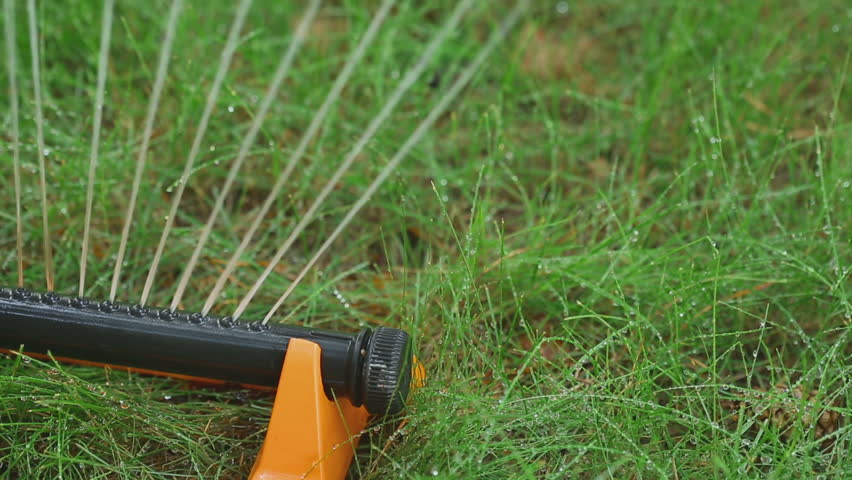 Lawn sprinkler spaying water over green grass with autumn yellow leaves. Irrigation system | Shutterstock HD Video #14842963
