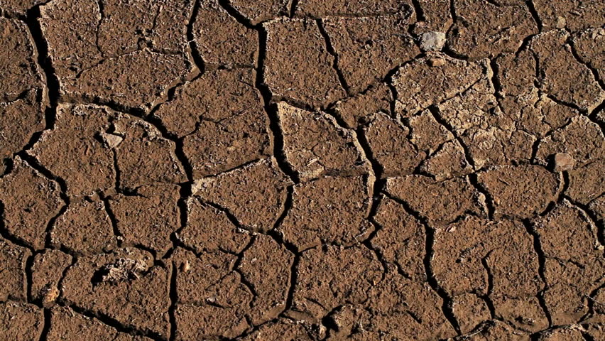 Header of parched