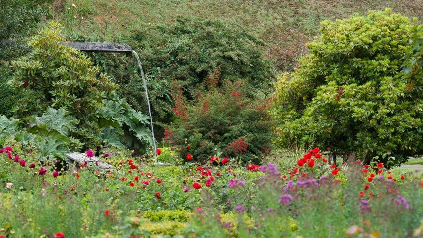 beautiful garden full of flowers and waterfall hd stock video clip - Beautiful Flower Gardens Waterfalls