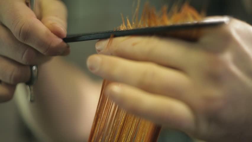 hairdresser cuts a hair