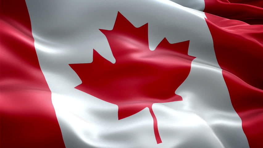 the canadian national flag essay Historical overview of canadian flags historical overview of the past flags used by canada a national flag for canada events leading up to the decision to adopt the canadian maple leaf flag.