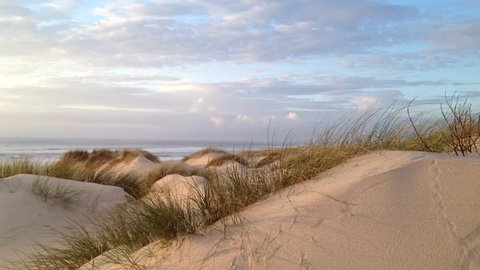 Coastline at sunset, real time at pacific ocean on windy evening by sand dunes.