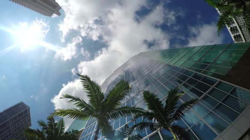 Summer sun reflecting in glass skyscrapers, contemporary office buildings, hotels and big residential block of flats with lush palm trees on sidewalk in business downtown in sunny Florida #15477025