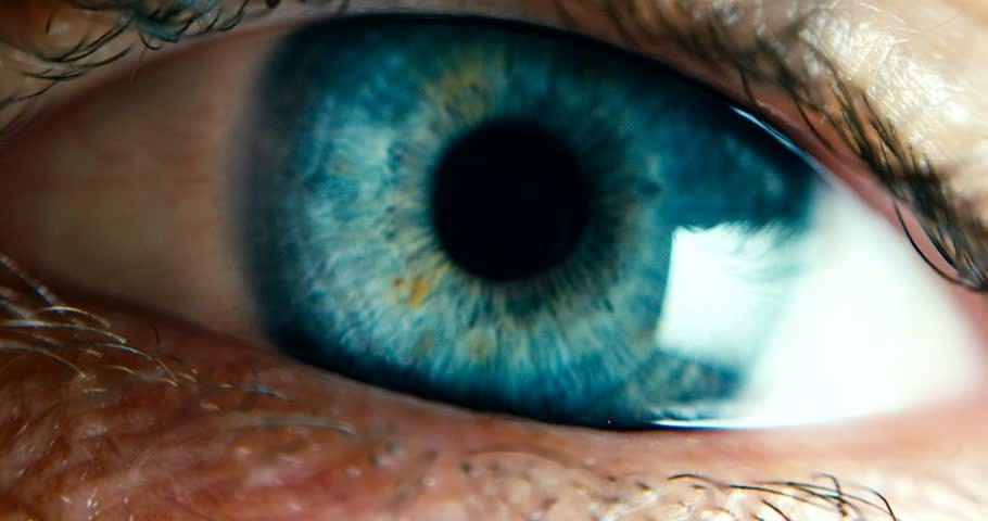 Close-up Macro Shot of male Human blue green Eye Blinking
