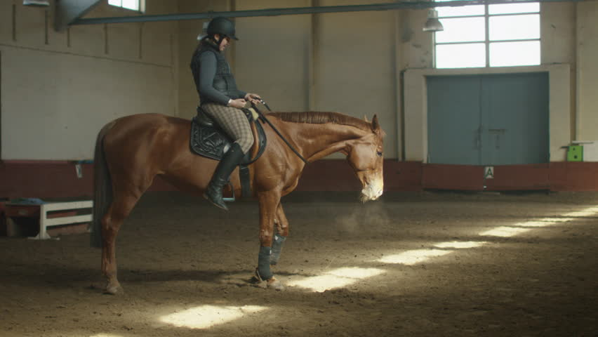 Young jockey girl is riding a brown horse. Shot on RED Cinema Camera in 4K (UHD).