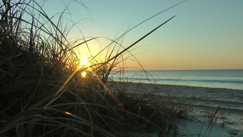 beach sunrise sea grass landscape