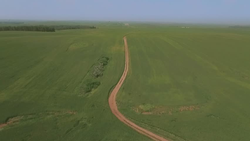 Flight over the green wheat field - Summer landscape with green grass and rural dirt road through the field -  flying forward | Shutterstock HD Video #16284532
