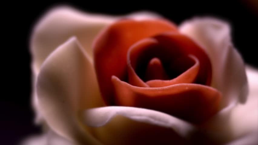 Fancy Cake / Cream Rose / Decorative Flower. Cake with creamy rose slowly rotates against black background. Macro close up. (av28203c)