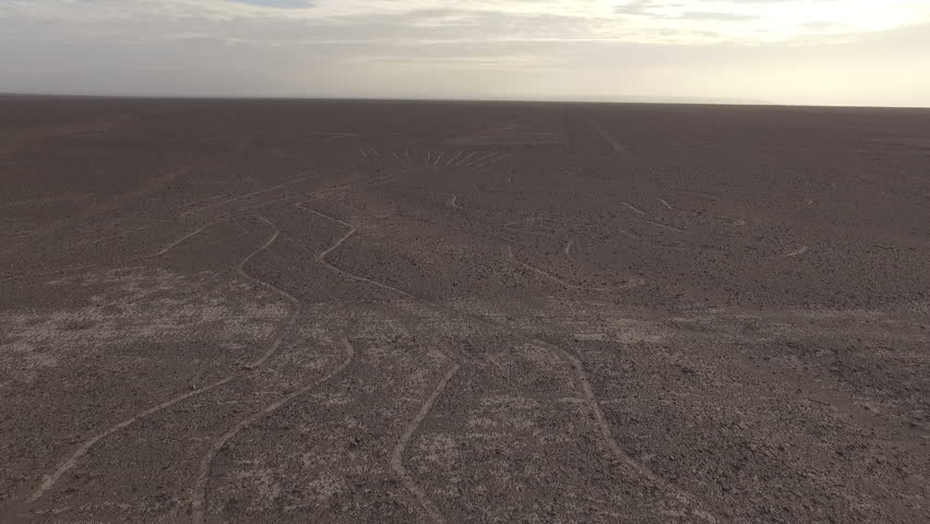 The wonderful Nazca Lines