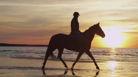 Silhouette of Rider on Horse at Beach in Sunset Light. Shot on RED Cinema Camera in 4K (UHD).