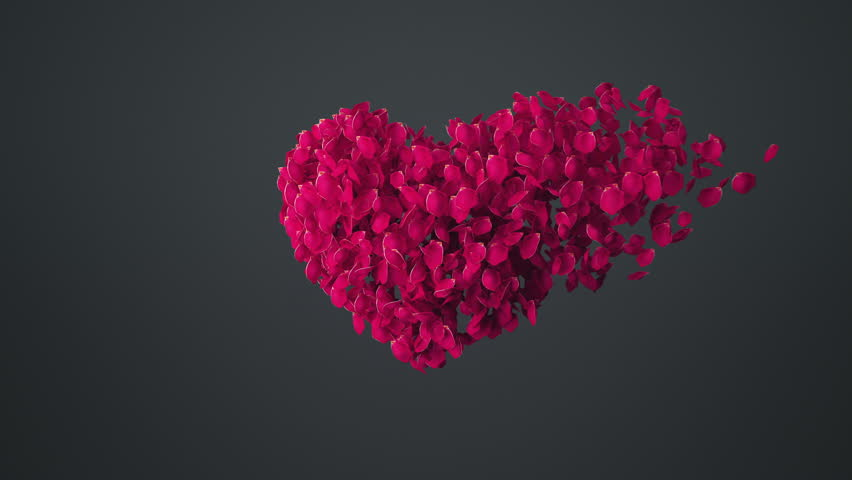 Heart shaped rose leaves disperse, with alpha. 3d animation 4k