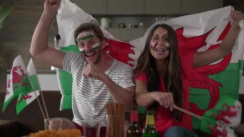 welsh fan couple with flag and painted faces cheering for wales thrilled about goal of their team