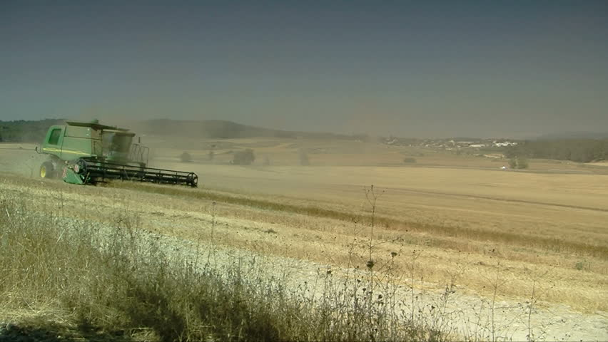 REHOVOT, ISRAEL - CIRCA MAY 2009: Wheat fields in Israel